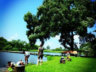 高松の池の釣り堀